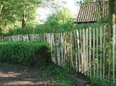 Engels kastanje hekwerk op rol houthandel woertink rheeze hardenberg ommen tuindeco hillhout basic woodvision (2)